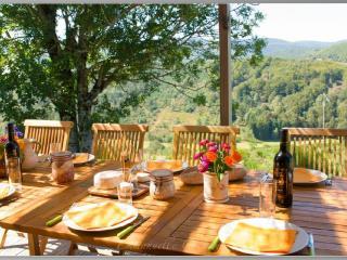 magnifique gite coeur des cevennes pres du tarn - Le Pont-de-Montvert vacation rentals