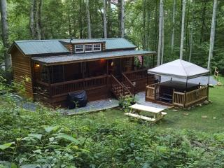 Nice Cabin with Internet Access and Mountain Views - Waynesville vacation rentals