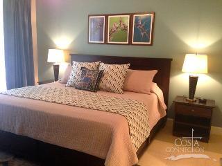 Pacifico L303 - 1 Bedroom Condo Just Off The Pool - Playas del Coco vacation rentals