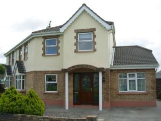 4 bedroom House with Satellite Or Cable TV in Ennis - Ennis vacation rentals