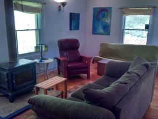 "KING ROOM Sleeps 2+ ""BLUE CABIN HOME 3"" - Asheville vacation rentals"