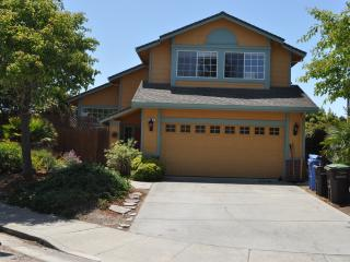 BEACH 1.5 BLKS, HOT TUB  CLOSE TO THE BEST OF S.C. - Santa Cruz vacation rentals