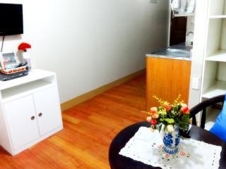 Fully Furnished Condo Rentals at Pasig City area - Pasig vacation rentals