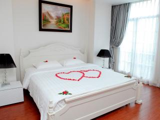 4* Serviced apartment CENTRAL - Hanoi vacation rentals