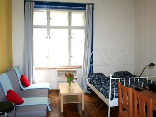 Prague center quiet apartment - Prague vacation rentals