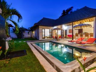 Nice Villa with Internet Access and A/C - Ungasan vacation rentals
