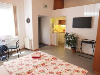 1 bedroom Condo with Internet Access in Ljubljana - Ljubljana vacation rentals