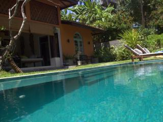 Little Cove villa with pool and best surfing spot - Dikwella vacation rentals