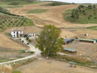 Cortijo el Pajaron - Setenil de las Bodegas vacation rentals