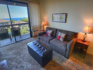 Family-Friendly Ocean View 2-Bedroom Condo - Kihei vacation rentals