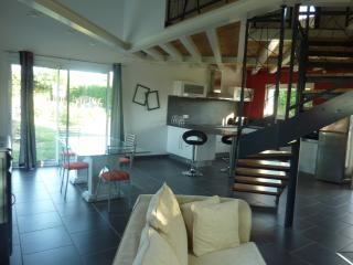 Nice Gite with Internet Access and A/C - Blan vacation rentals