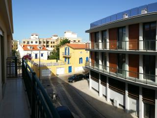 Cozy 2 bedroom apartment 50meters from the beach - Sao Martinho do Porto vacation rentals