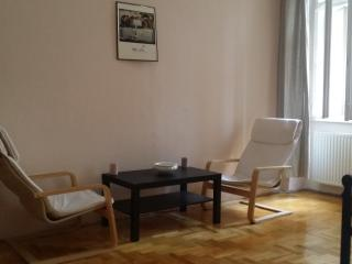 Budapest Apartment Superb Location - Budapest vacation rentals