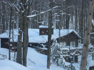 Winter is here! The snow if falling, book now! - Lake Harmony vacation rentals