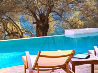 Villa Amoudia - Luxury Villa right on the beach with Private Pool - Sivota vacation rentals