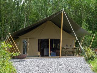 Safari lodge camping on dairy farm near Swanage - Langton Matravers vacation rentals