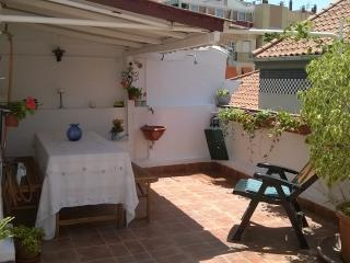 Penthouse, private terrace in Malaga Old Town - Malaga vacation rentals