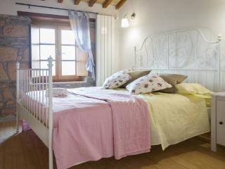CASA ROMANTICA per 4 con JACUZZI,Wi-Fi,uso Piscina - Civitella d'Agliano vacation rentals
