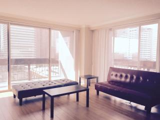 Downtown Houston High Rise Apartment- with Parking - North Houston vacation rentals