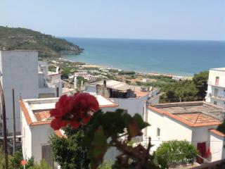 Lovely Penthouse in Peschici with A/C, sleeps 3 - Peschici vacation rentals