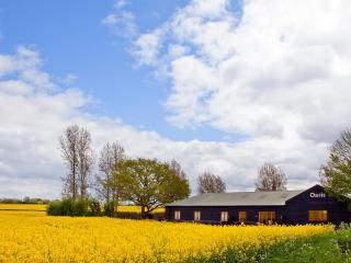 Moorhen at Oasis barn - Halesworth vacation rentals