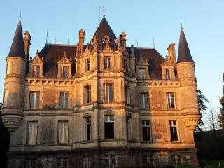 Nice Castle with Internet Access and Cleaning Service - La Châtaigneraie vacation rentals