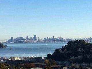 Gorgeous SF bay views from cozy 1-br pied-à-terre - Tiburon vacation rentals