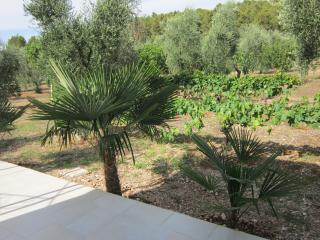 vila sejuda - Peschici vacation rentals