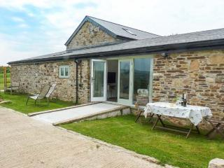 OWL BARN, ground floor, wide doorways, wet room, WiFi, enclosed private garden, near Tavistock, Ref 23660 - Tavistock vacation rentals