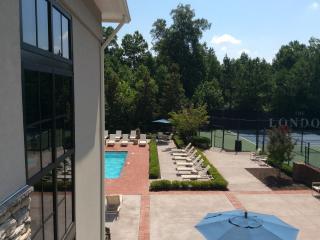 Centrally located 2 bed Delux Apt. - Atlanta vacation rentals