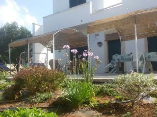 1 bedroom Apartment with Stove in Porto Cesareo - Porto Cesareo vacation rentals
