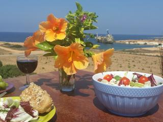 Seafront Villa at SeaCaves - Peyia vacation rentals