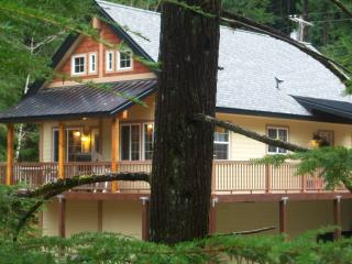 The Forest Ridge Chalet OPEN Tgiving $199nt Sale - Packwood vacation rentals