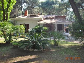 Nice 1 bedroom Townhouse in Castellaneta Marina - Castellaneta Marina vacation rentals