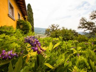 Charming Country Bed and Breakfast Close to Floren - Fiesole vacation rentals