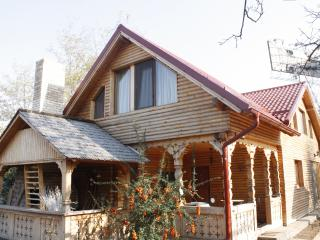 Nice Cottage with Internet Access and A/C - Otopeni vacation rentals