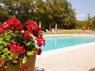 Antico Borgo La Torre Agriturismo - Rita - Reggello vacation rentals