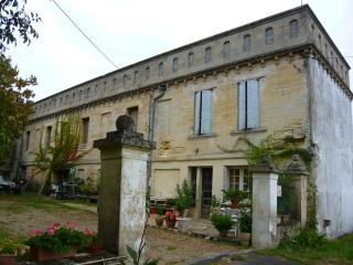 splendid loft in maison de maître near Bordeaux - Bourg vacation rentals