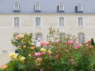Château d'Hauterives XVIIIème ISMH - Laval vacation rentals