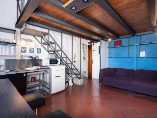 RICASOLI quiet and cozy near Duomo - (36) - Florence vacation rentals