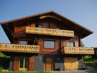 Nice Ski chalet with Internet Access and Swing Set - Habere-Lullin vacation rentals