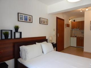 Kripis Studio Thessaloniki No1 - Thessaloniki vacation rentals
