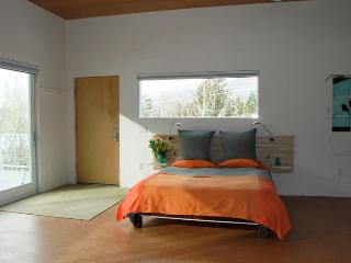 Gorgeous,  Modern STUDIO in town! - No car needed. - Aspen vacation rentals