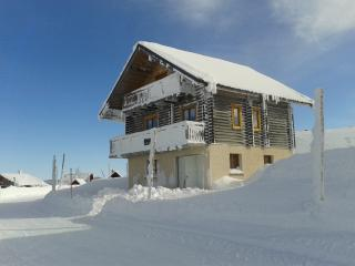 Nice Chalet with Satellite Or Cable TV and Cleaning Service - Bouvante vacation rentals