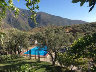 Almond Hill House: stylish farmhouse, olives, pool - Granada vacation rentals