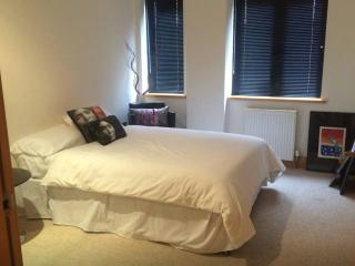 Lovely double private room with own bathroom! - Kingston upon Thames vacation rentals
