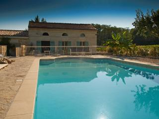 Blaye - Chateau on vineyard, with exclusive pool - Saint-Ciers-De-Canesse vacation rentals