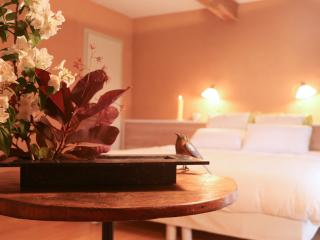 Romantic 1 bedroom Gaillac Bed and Breakfast with Internet Access - Gaillac vacation rentals