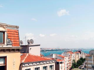 SEA VİEW FLAT İN TAKSİM - Istanbul Province vacation rentals