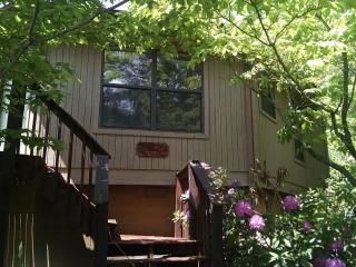 Bright 2 bedroom House in Gatlinburg - Gatlinburg vacation rentals
